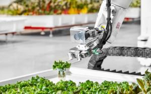 TECHNOLOGIE Iron Ox : Vers une ferme fonctionnelle sans travailleurs humains, avec des robots ! dans News article-2-28-11-2019-300x188