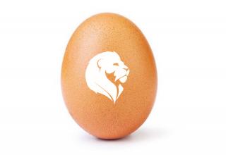egg axileo