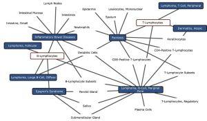 Le nouveau modèle analyse l'ARN des cellules afin d'établir des liaisons et interactions entre le génome de certaines cellules, et les potentielles maladies associées. Crédits : Crédits : Young-suk Lee et al. 2019